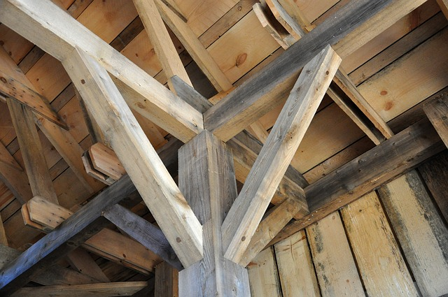 construire batiment bois